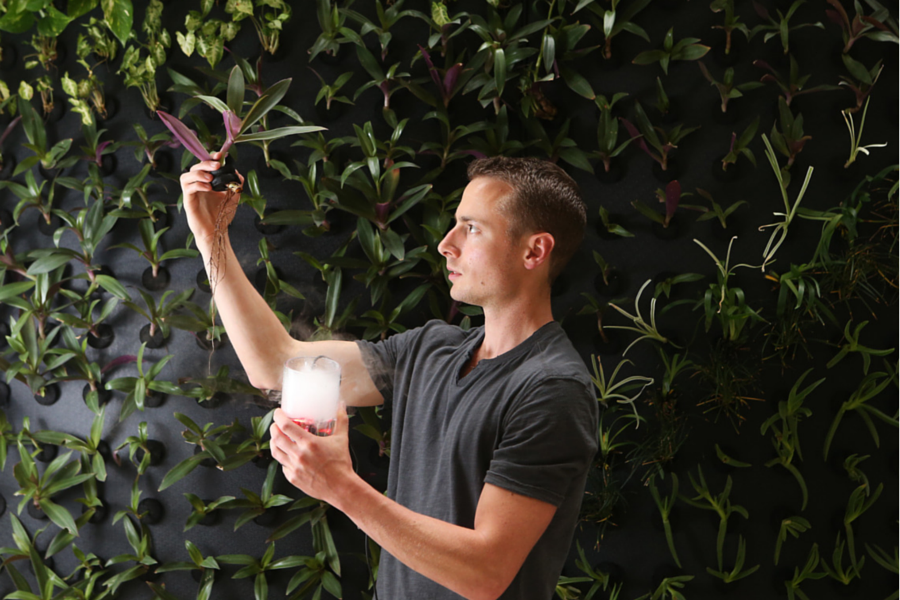 startup podplants looks to transform corporate spaces with indoor vertical garden units startup daily