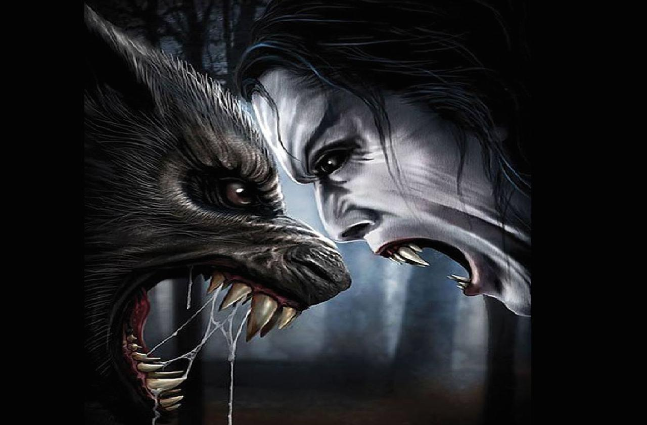 Vampire Vs Werewolves