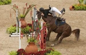 horse, fall, crash